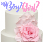 Boy or Girl is the question Baby Shower Acrylic Cake Topper